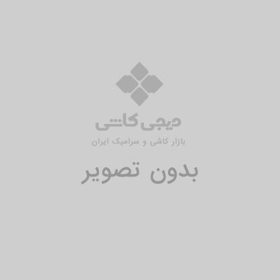 بازرگانی ایرانیان(رضایی)
